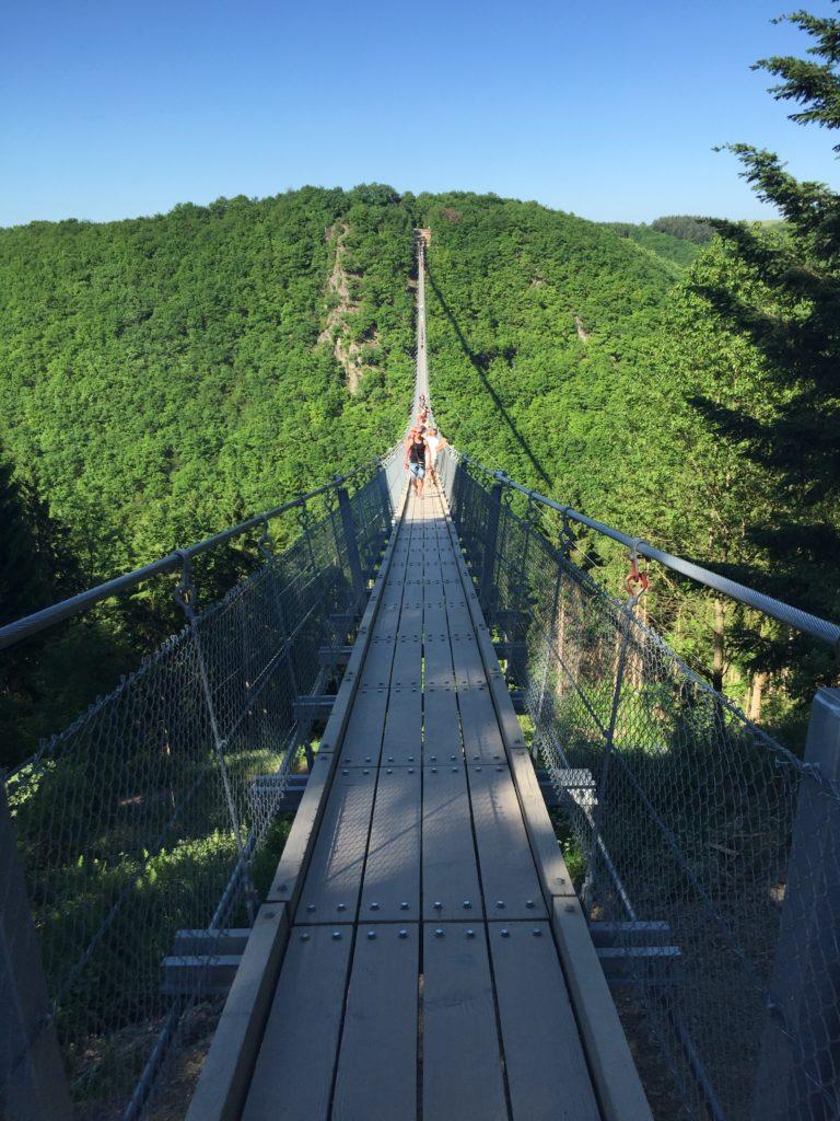 rheinland pfalz ausflugstipp: Geierlay Hängebrücke