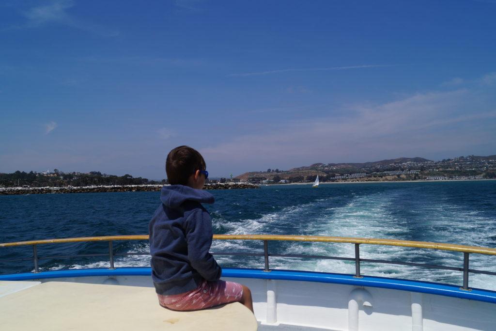 Whale watching in Dana Point, Kalifornien