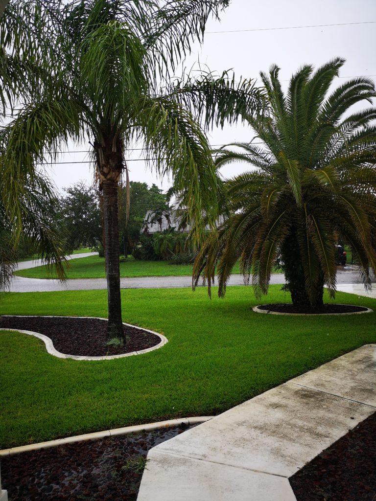 Regenschauer gehören im Juli und August in Florida mit dazu
