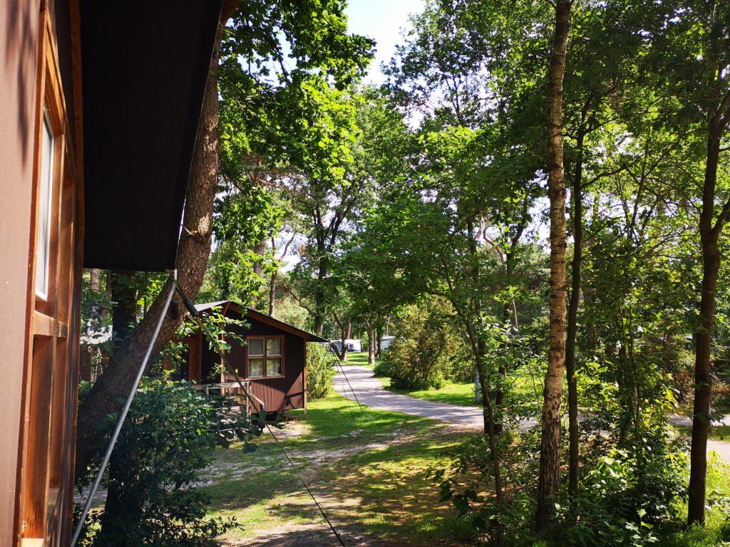 Blick von der Terrasse der Youpi! Lodge auf dem Beerze Bulten Campingplatz