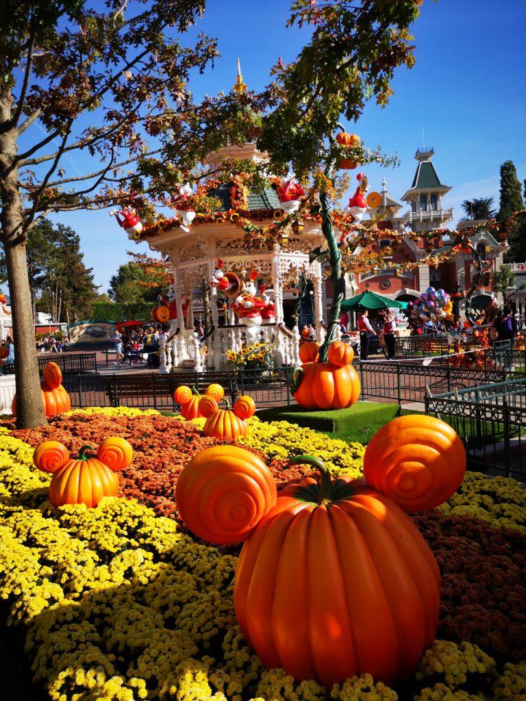 Mickey Maus Kürbisse im Disneyland