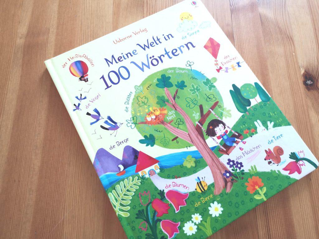 Meine Welt in 100 Wörtern vom Usborne Verlag