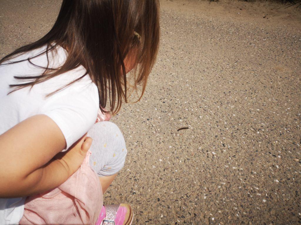 mit kindern draußen die natur entdecken