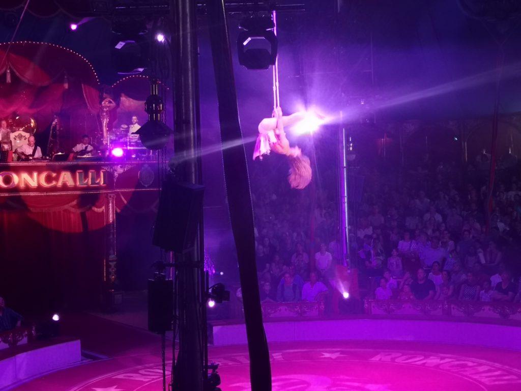 waghalsig und einzigartig: die shows im roncalli circus