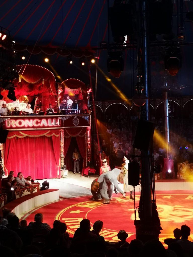 im roncalli circus gibt es keine echten tiere