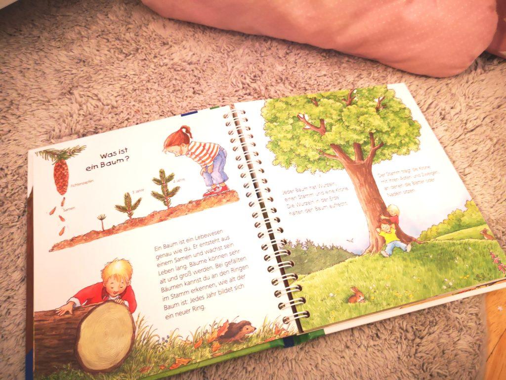 kinderbücher für den herbst: wieso?weshalb?warum? junior deer wald vom ravensburger verlag