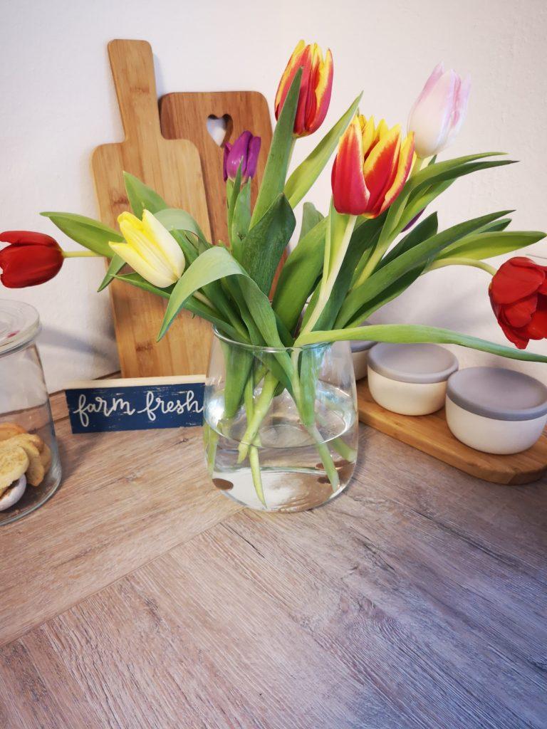 der frühling zieht ein mit frischen tulpen