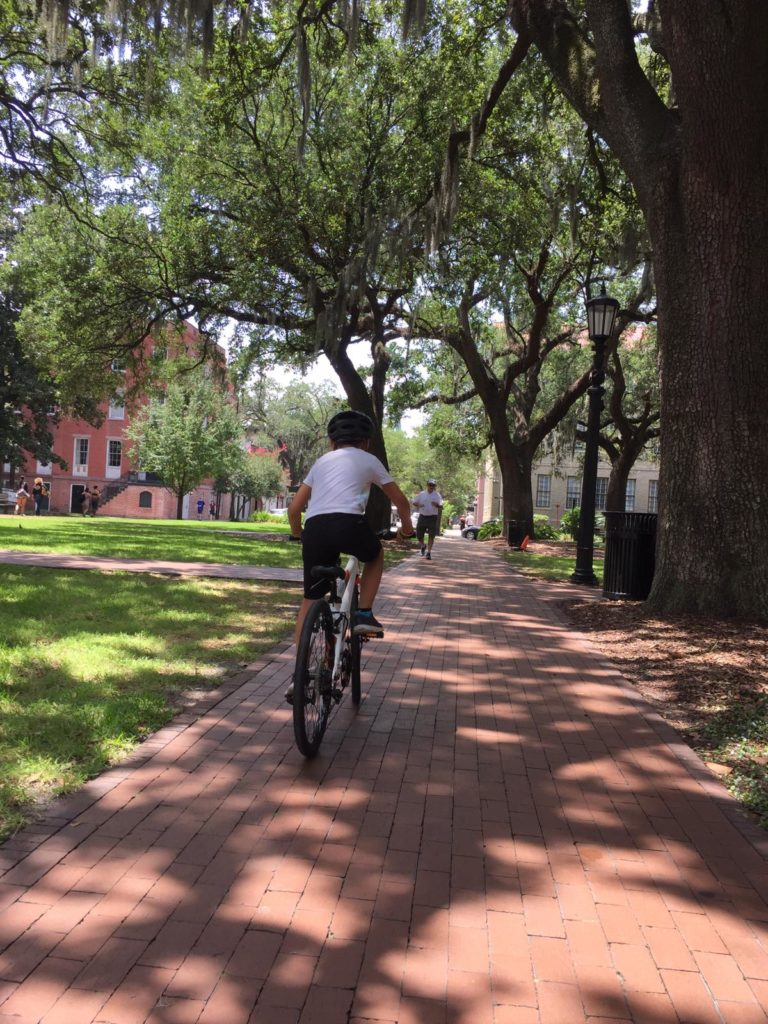 mit dem fahrrad durch savannah