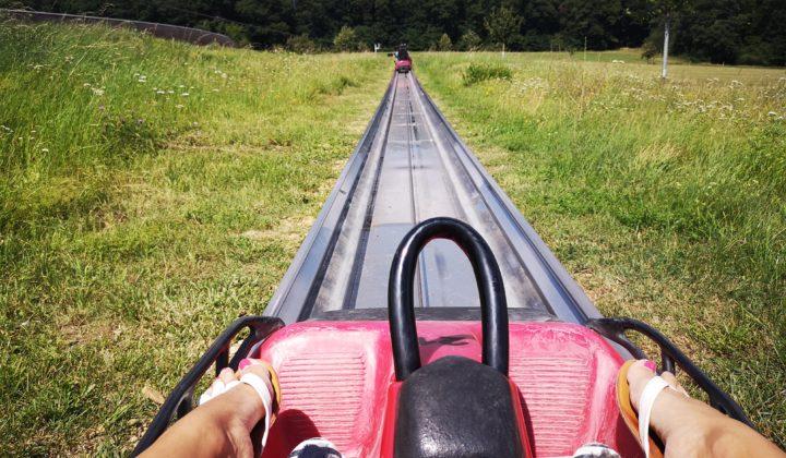 fahrvergnügen auf der sommerrodelbahn loreley bob