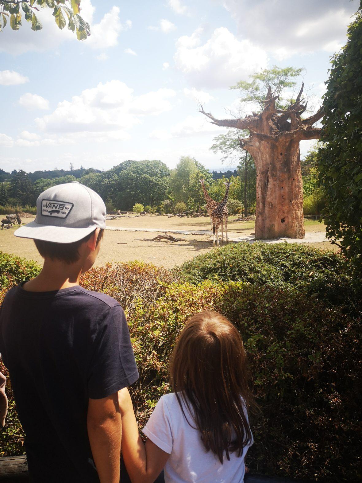 der opel-zoo im taunus