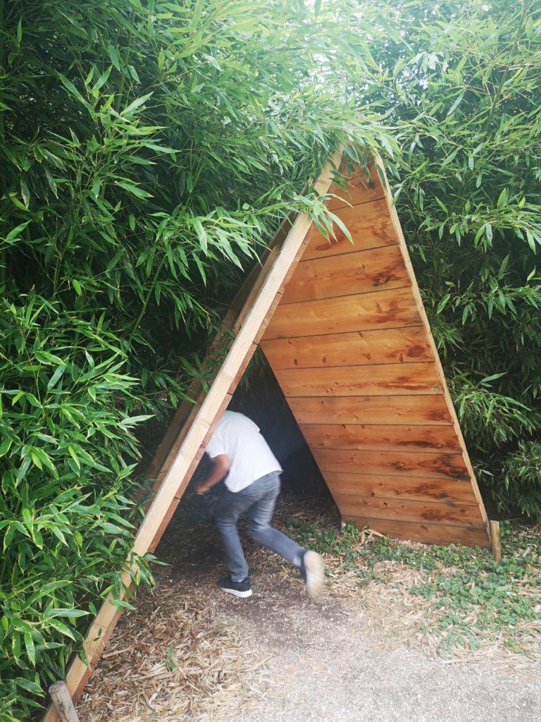ein bambuswald mitten in den gärten von appeltern